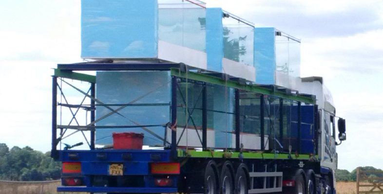 Balcony transportation on Sapphire double stack lorry trailers